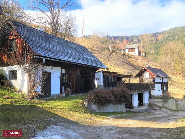 Heirzaum, Tankraum, Holzlagerräume und Gesindehaus