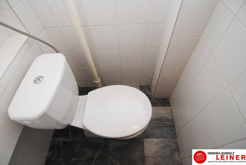 Schwechat Eigentumswohnung - 2 sonnendurchflutete Zimmer mit Blick in den liebevoll begrünten Garten Objekt_8776 Bild_439