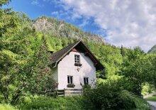Einsames Ferienhaus im Wald