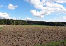 Baugrund zum Wohnen im Waldviertel, Reingers in Hirschenschlag kaufen