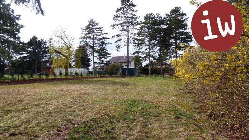 Schöner Baugrund in Gänserndorf-Süd Objekt_604 Bild_195
