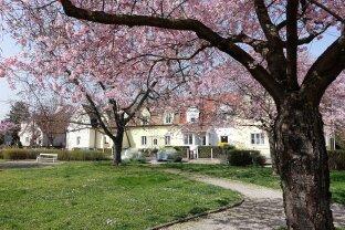 Gediegenes Einfamilienhaus mit prachtvollem Garten,Interessiert ?