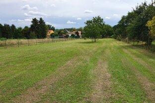 Kleines Bauträgerobjekt in Trautmannsdorf - 2866m2 Grundstück, davon 774m2 Bauland, 50% verbaubar, Bauklasse I,II.
