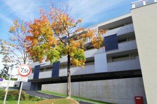 Top 5 - Neubau Kleinwohnung in Steyr, mit Parkplatz