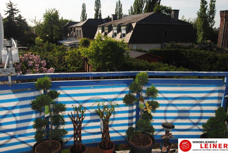 Schwechat: Top gepflegte 3 Zimmer Eigentumswohnung mit sonniger, ruhiger Loggia! Objekt_8939 Bild_894