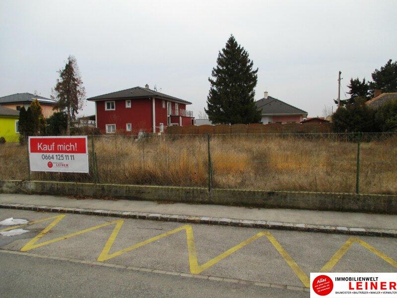 RARITÄT! Traumhafter Baugrund an der südlichen Wiener Stadtgrenze Objekt_7932