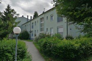 3 Zimmer-Wohnung mit Grünblick & Balkon - Maria Enzersdorf