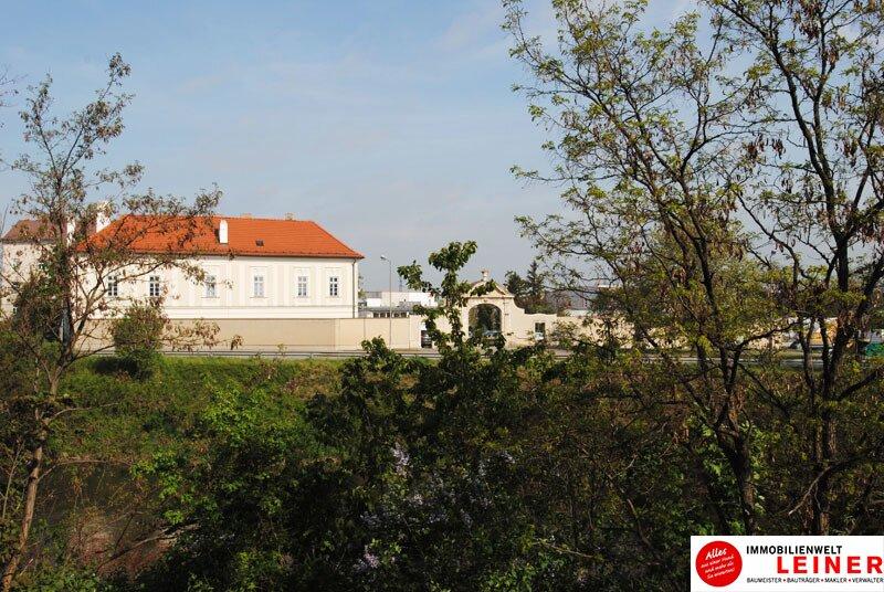 Schwechat - Rarität! Grundstück mit Schlossblick in Bestlage zu verkaufen Objekt_9372