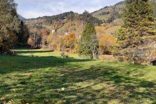 Baugrundstück  in Afritz nähe Villach in schöner Waldrandlage - ohne Bebauungsverpflichtung