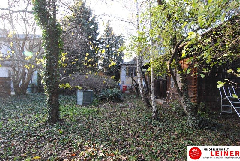 Ihr Haus in Leopoldsdorf - jeden Tag Urlaub im neuen Zu Hause Objekt_9231 Bild_788