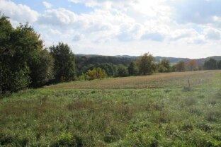 Nähe Therme Loipersdorf: Grundstück in erhöhter Ruhelage mit Ganztagssonne