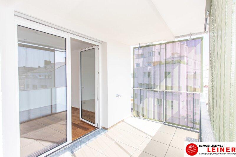*UNBEFRISTET+BARRIEREFREI*Schwechat - 3 Zimmer Mietwohnung im Erstbezug mit großer Terrasse und Loggia Objekt_9610 Bild_376