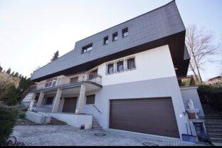 Wonderful Beverly Hills villa only 11 km from Vienna