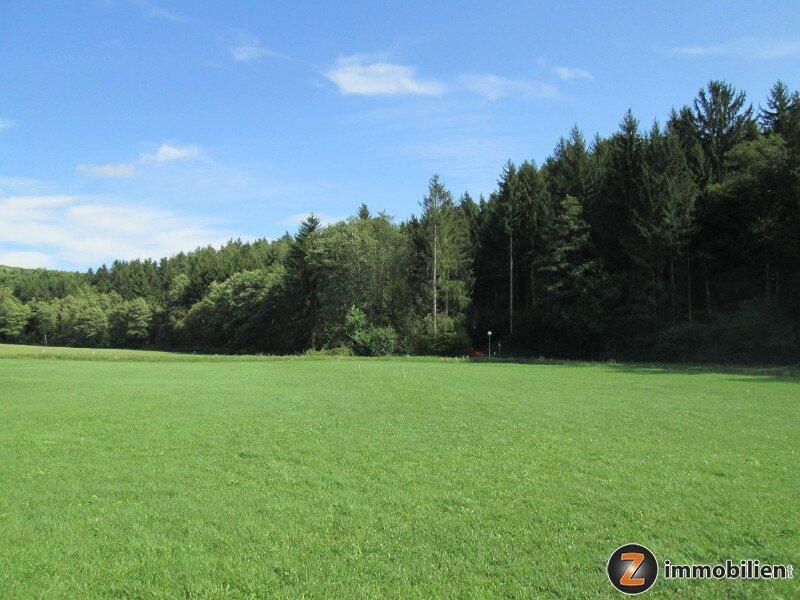 Thermenregion Stegersbach: Herrliches Baugrundstück in Waldrandlage /  / 7534Thermenregion Stegersbach / Bild 0