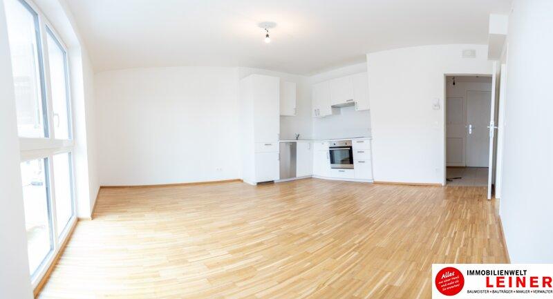 Himberg - Zinshaus mit 4% Rendite zu verkaufen Objekt_9396 Bild_323