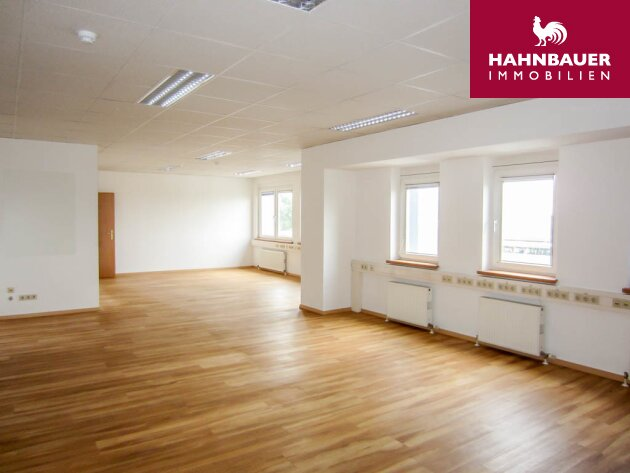 Modern office - 145 sqm south of Vienna, Austria in Wr. Neudorf with access to WLB Badner Bahnv