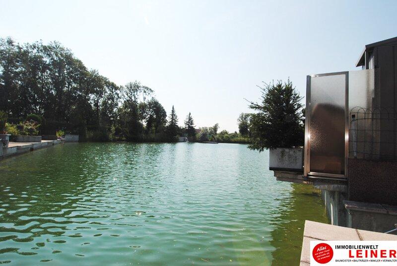 Margarethen am Moos - Nähe Wien:   Mein Eigentum direkt am Wasser! Objekt_9307 Bild_576