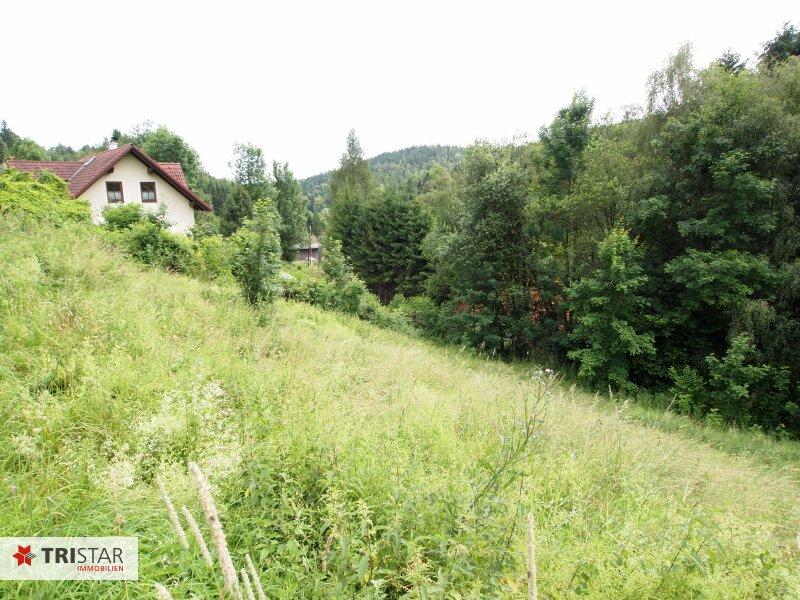 Sonniges Grundstück am Waldrand in Tauchen-Mönichkirchen!