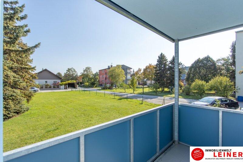 Schwechat/Mannswörth- Eigentumswohnung zu einem sensationellen Kaufpreis! Objekt_12019 Bild_138