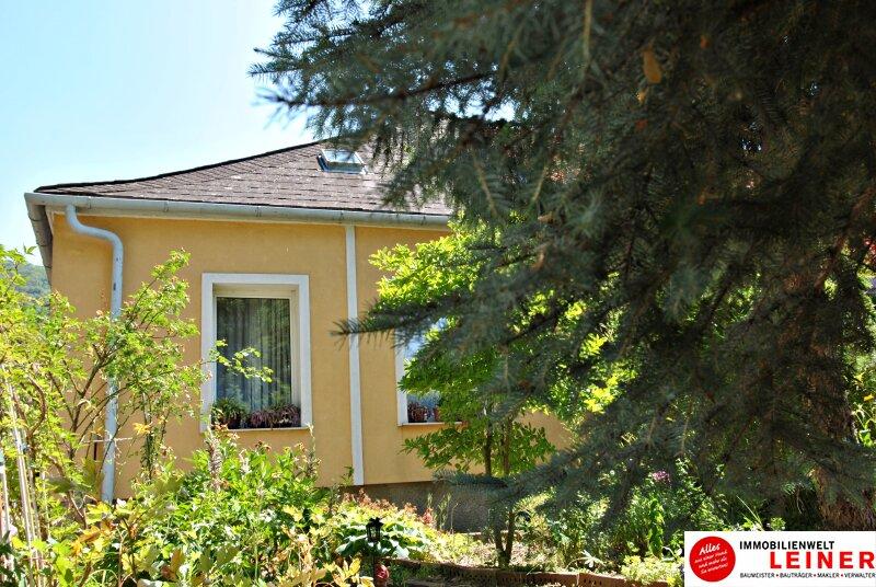 Preisgünstiges Einfamilienhaus in Hainburg/Donau sucht neuen Eigentümer!