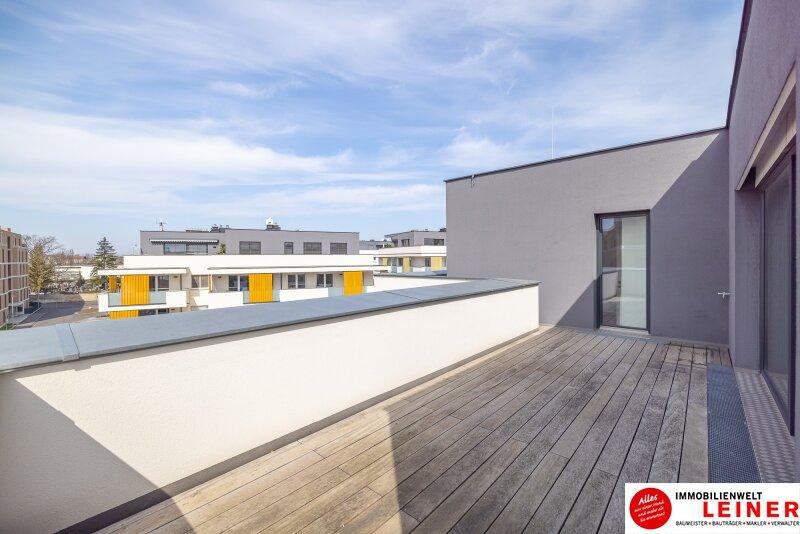 Penthouse Eigentumswohnung am Alanovaplatz in Schwechat an der Grenze zu Wien Objekt_13905 Bild_177