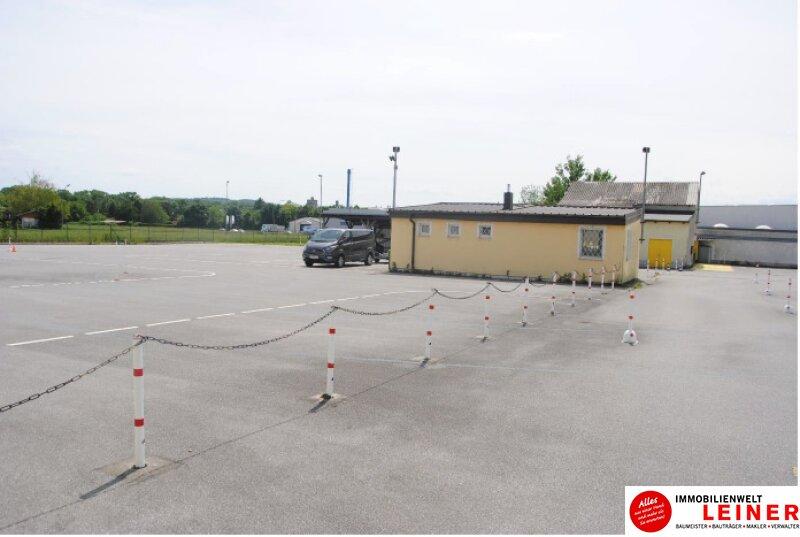 Einzigartiges Betriebsgrundstück in Bruck/Leitha mit Büro, Lager & nahe gelegener Autobahnanschlussstelle Objekt_13742