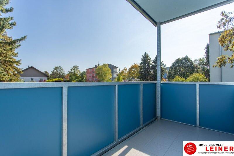 Schwechat/Mannswörth- Eigentumswohnung zu einem sensationellen Kaufpreis! Objekt_13904 Bild_148
