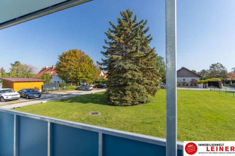 Schwechat/Mannswörth- Eigentumswohnung zu einem sensationellen Kaufpreis! Objekt_13904 Bild_150