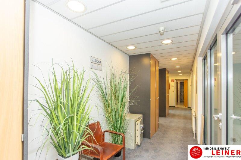 Praktisches Büro im Zentrum/Schwechat - Ohne Kündigungsfrist -möbliert- Parkplatz direkt vor der Haustür Objekt_13836 Bild_83