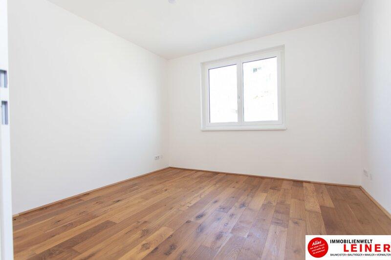 RESERVIERT! *UNBEFRISTET* 17m² Terrasse * Schwechat - 2 Zimmer Mietwohnung Objekt_13004 Bild_111