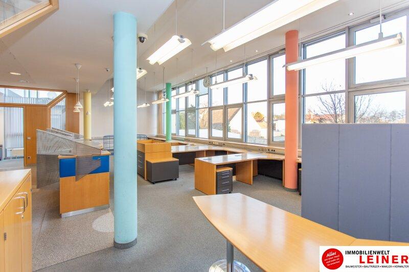 Wien Umgebung/Ebergassing - Ihr eigenes Bürogebäude in der Nähe von Wien Objekt_13906 Bild_193