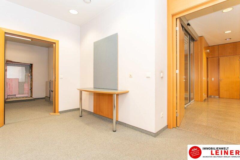 Wien Umgebung/Ebergassing - Ihr eigenes Bürogebäude in der Nähe von Wien Objekt_13906 Bild_199