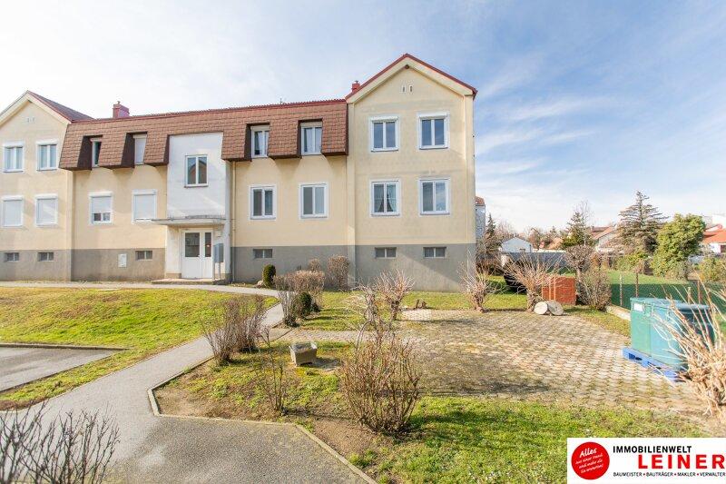Hier wird Ihr Wohntraum Wirklichkeit! 3 Zimmer Mietwohnung in Enzersdorf an der Fischa Objekt_13908 Bild_230
