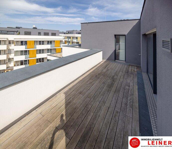 Penthouse Eigentumswohnung am Alanovaplatz in Schwechat an der Grenze zu Wien Objekt_13905 Bild_180