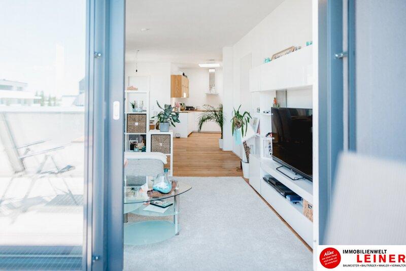 Schwechat - Penthouse - inklusive 28 m² Terrasse Objekt_9966 Bild_259