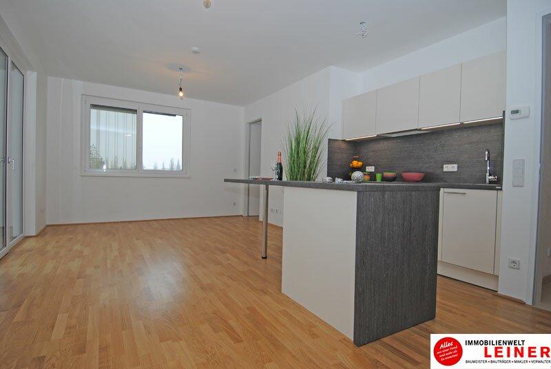 Schwechat - 2 Zimmer Mietwohnung im Erstbezug Objekt_3764 Bild_31