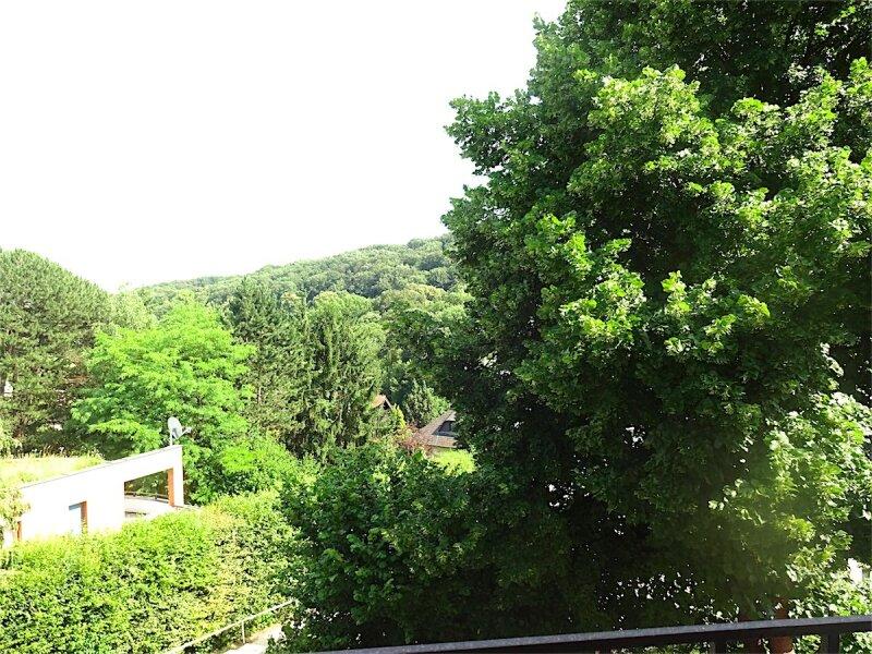 Bildhübsche 3-Zimmer Wohnung mit herrlichem Grünblick von allen Zimmern, Erstbezug nach Sanierung, direkt beim Pötzleinsdorfer Schloßpark, Bus 41A + Linie 41! /  / 1180Wien / Bild 5