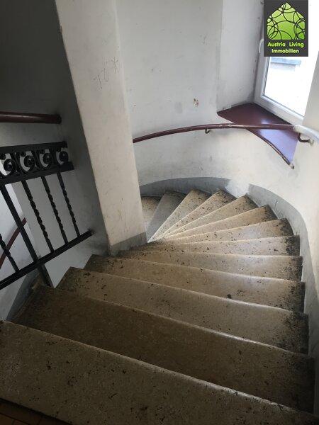 Helle 3 Zimmer Wohnung nahe Donauinsel /  / 1200Wien / Bild 1