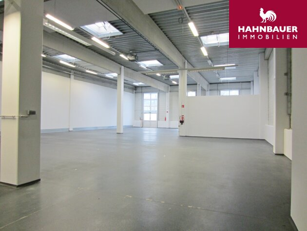 Storage in Warehouse 650 sqm south of Vienna in Wr. Neudorf/Vösendorf, Austria to let