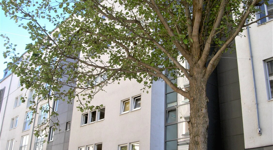 NÄHE U3 NEUBAUGASSE UND MARIAHILFERSTRASSE  2 ZIMMER 59 m²   EINBAUKÜCHE | LIFTHAUS | TOPZUSTAND