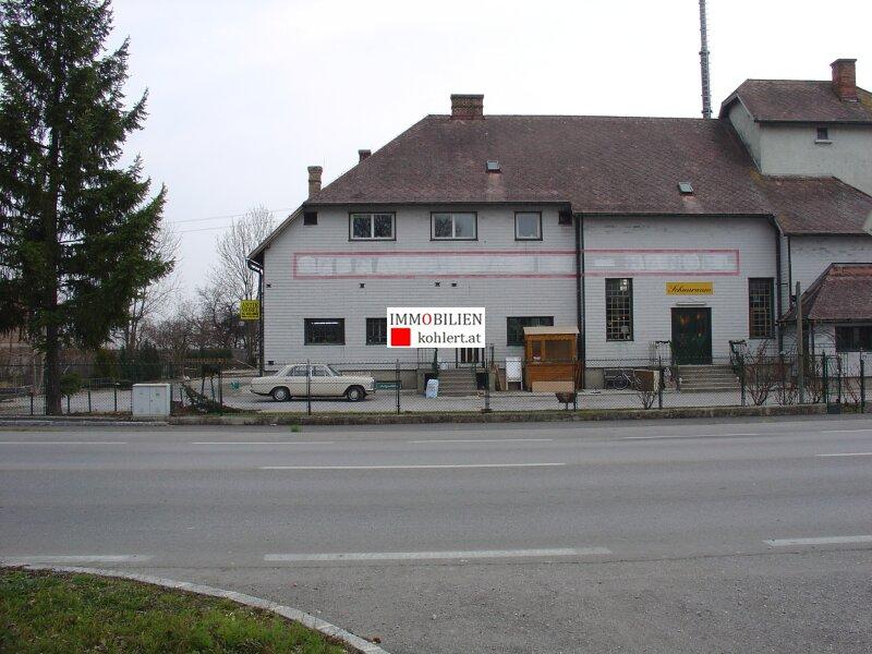 Haus, 2604, Theresienfeld, Niederösterreich