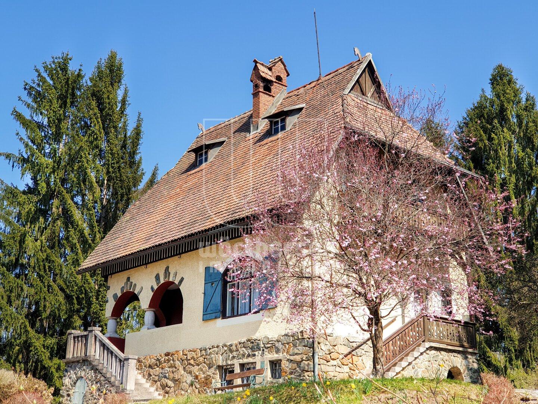 die denkmalgeschützte Villa Nest mit Kirschblüte