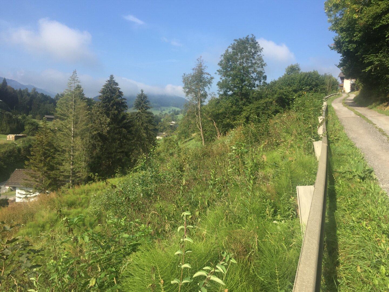 Grundstück Goldegg, Ansicht von Nordosten
