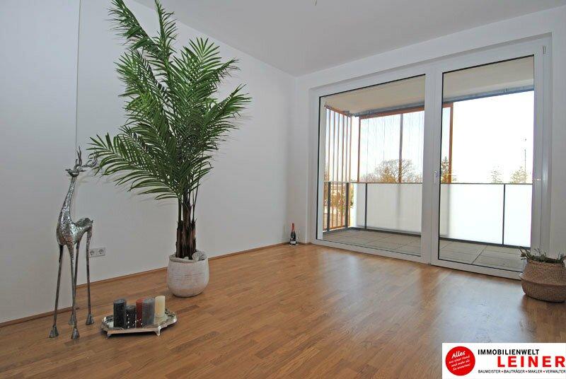 Schwechat - 2 Zimmer Mietwohnung mit 86 m² großem Garten und Terrasse