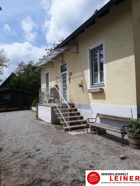 Pferde/Tierliebhaber aufgepasst! Verwirklichen Sie sich Ihren Traum vom eigenen Haus + Pferdestall! Nähe Wien! Objekt_6933 Bild_408