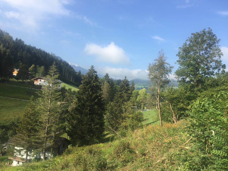 Grundstück Goldegg