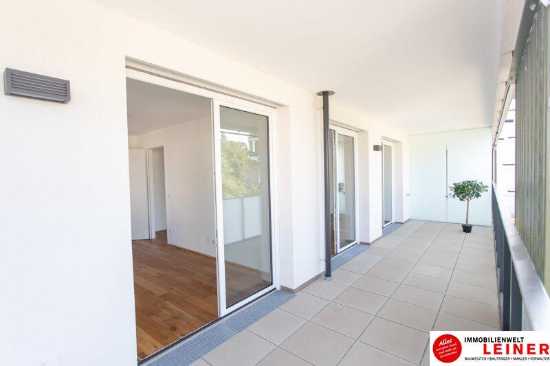 *UNBEFRISTET*BARRIEREFREI* Schwechat - 2 Zimmer Mietwohnung im Erstbezug mit großer Terrasse Objekt_9146 Bild_585