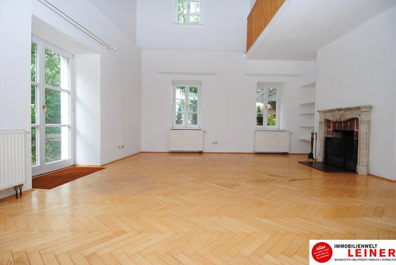 6 Zimmer Bürogebäude/Praxis in geschichtsträchtigem Gebäude nahe Wien Objekt_10771 Bild_200