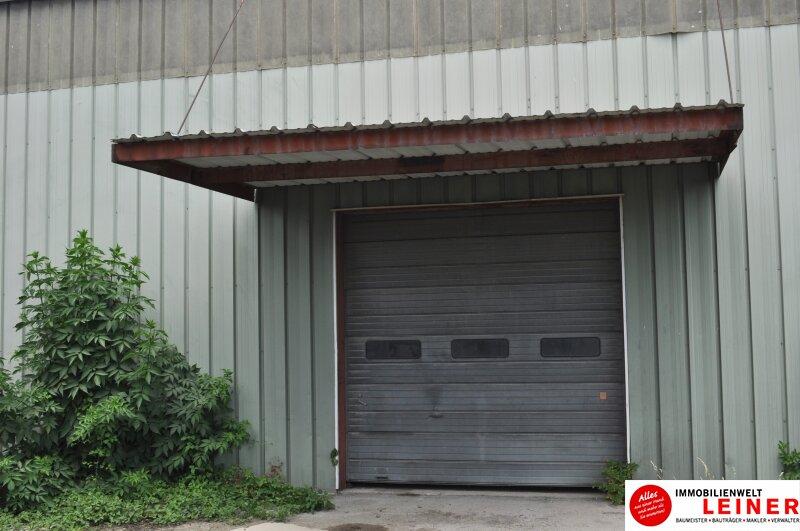 Lagerhalle nähe Autobahnabfahrt S1 Leopoldsdorf zu vermieten Objekt_8892 Bild_812