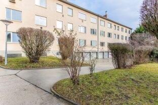 Helle, freundliche, neu renovierte 2,5 Zimmer Wohnung in Biedermannsdorf!